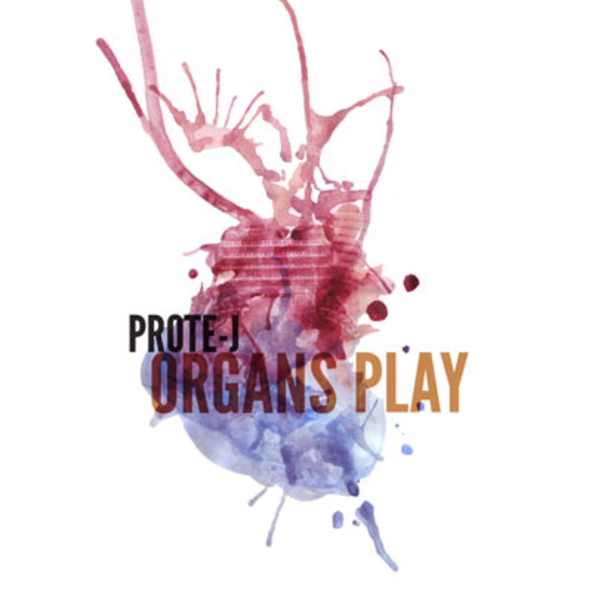 protej-organsplay.jpg