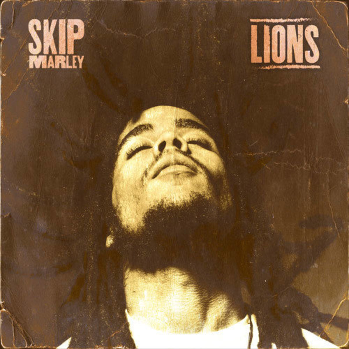 skip-marley-lions.jpg