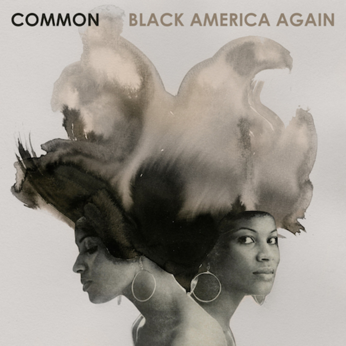 common-black-america-again1.jpg