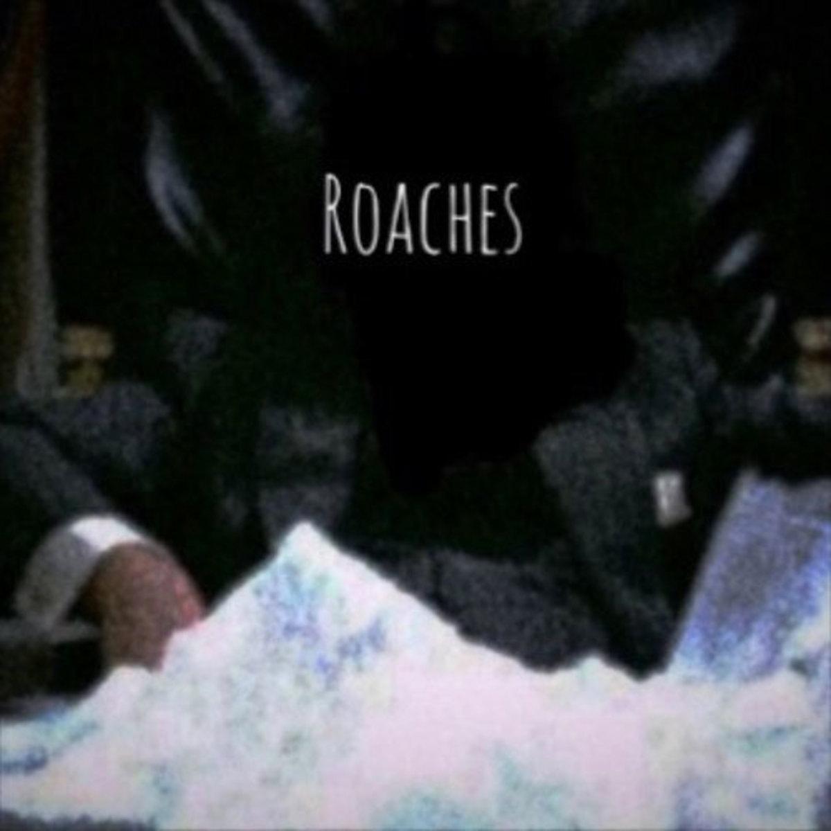 sliim-bambino-roaches.jpg