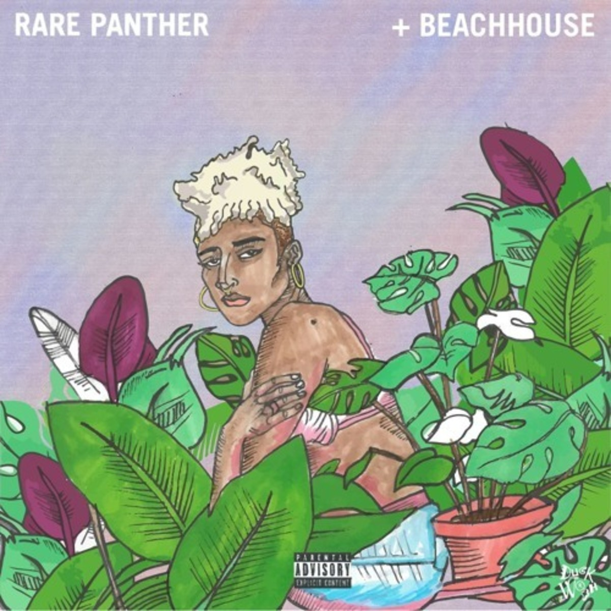 duckwrth-rarepanther-beachouse.jpg