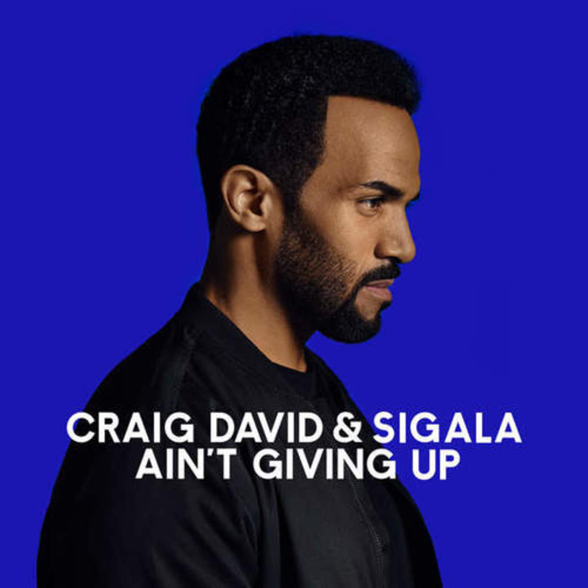 craig-david-aint-giving-up.jpeg
