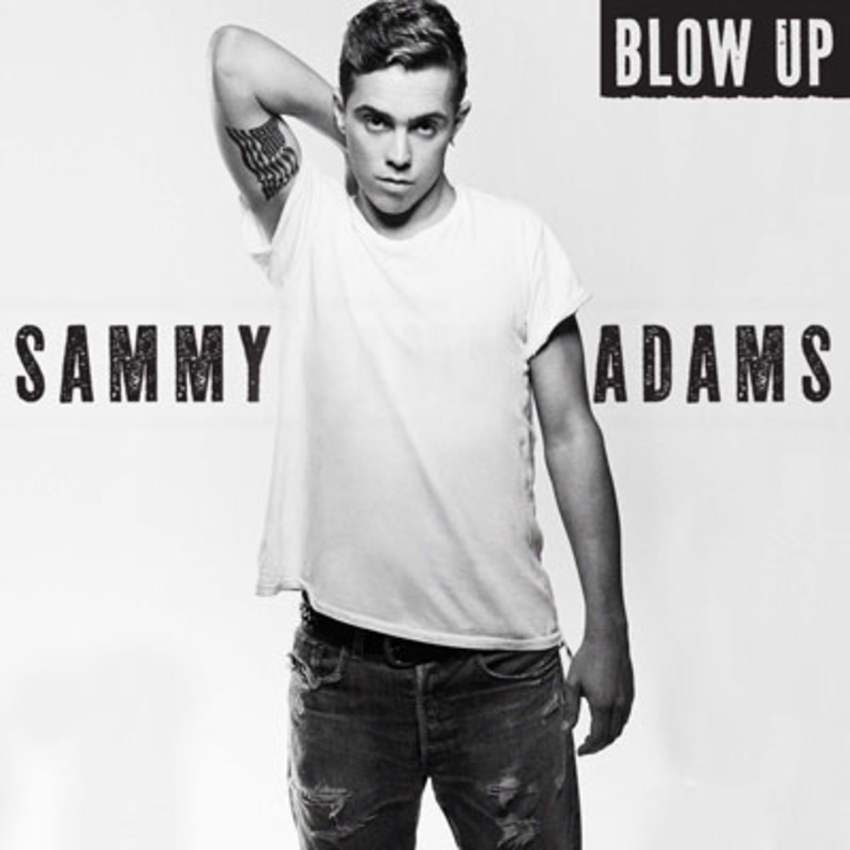 sammyadams-blowup.jpg