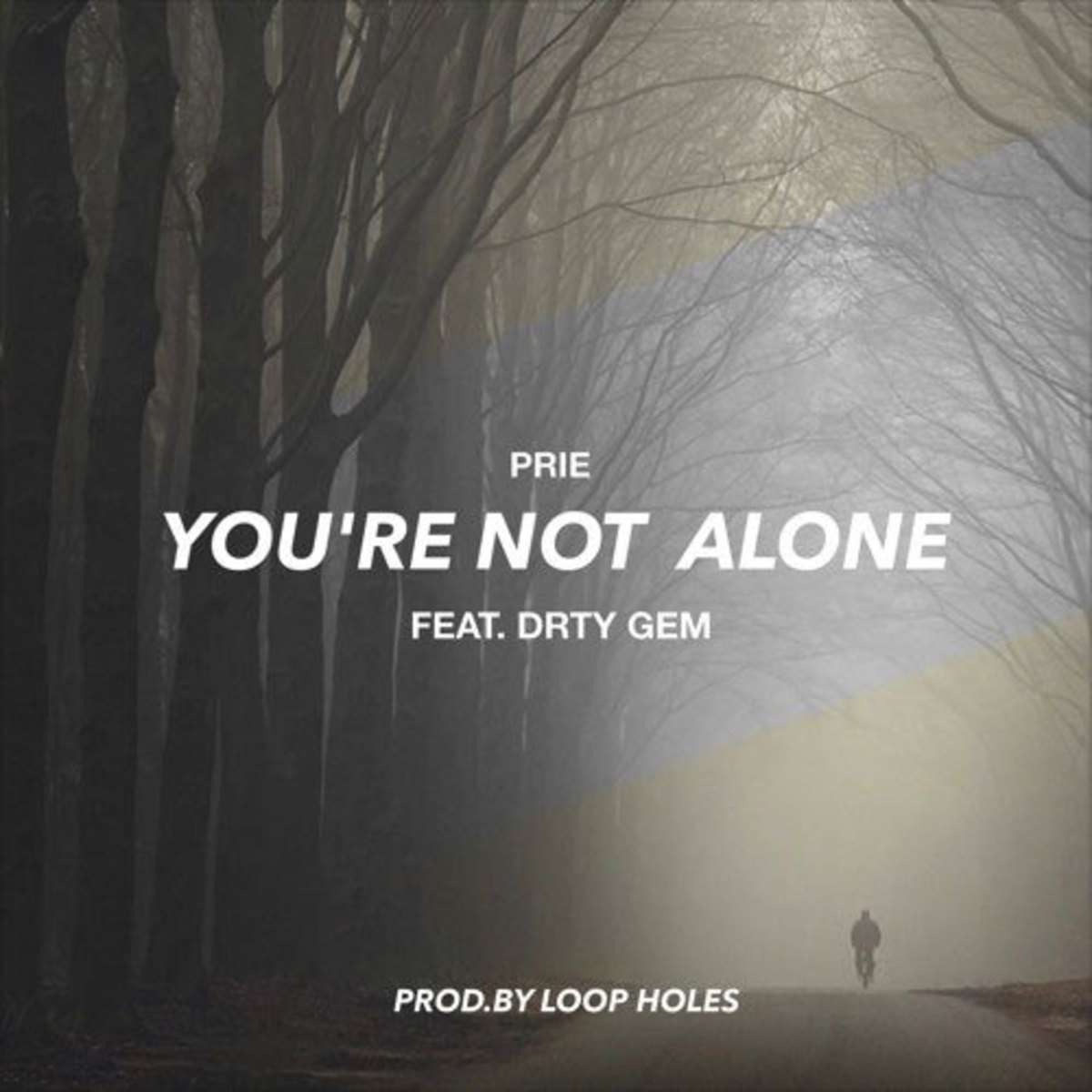 prie-youre-not-alone.jpg
