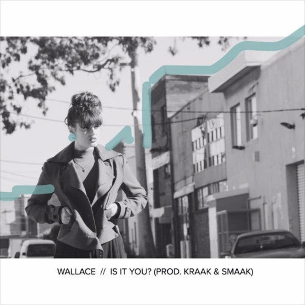 wallace-is-it-you.jpg