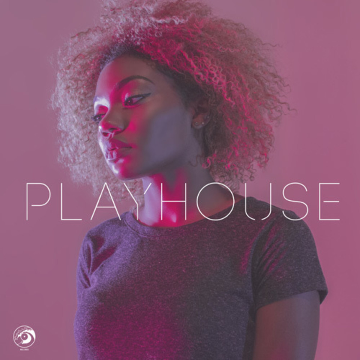 alexis-roberts-play-house2.jpg