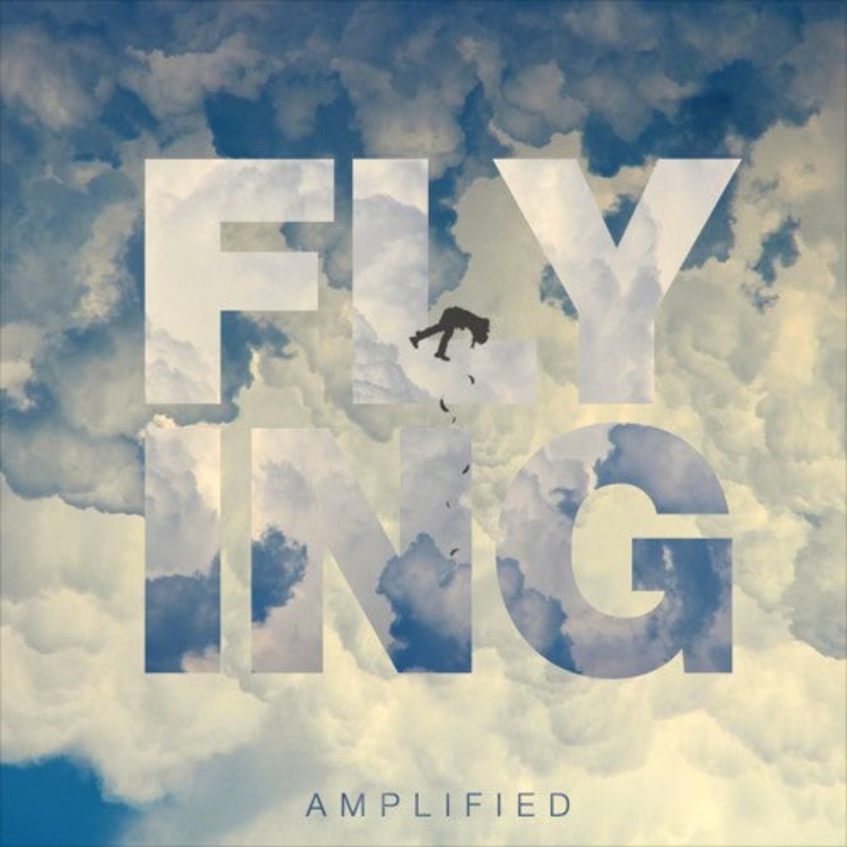 amplified-flying.jpg