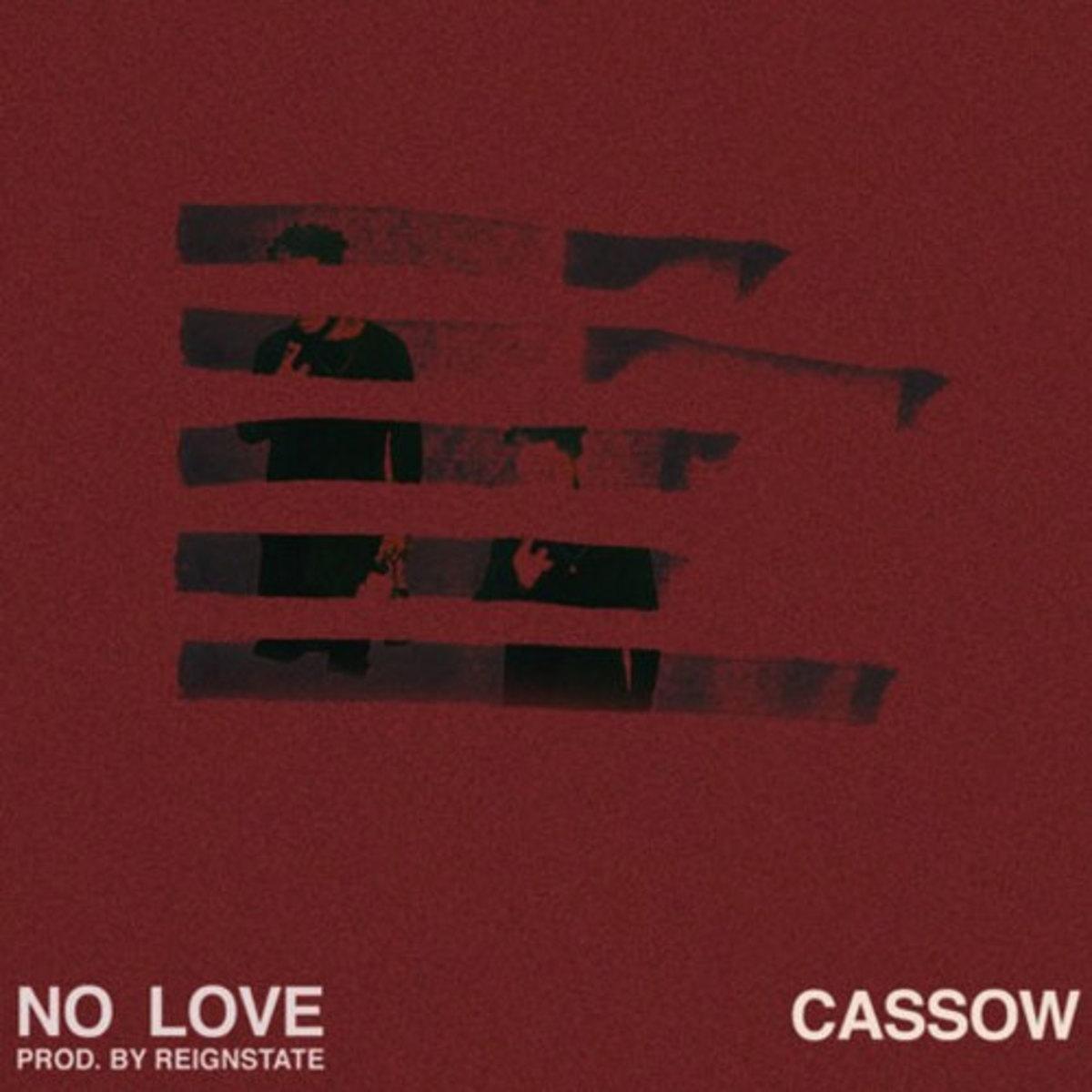 cassow-no-love2.jpg