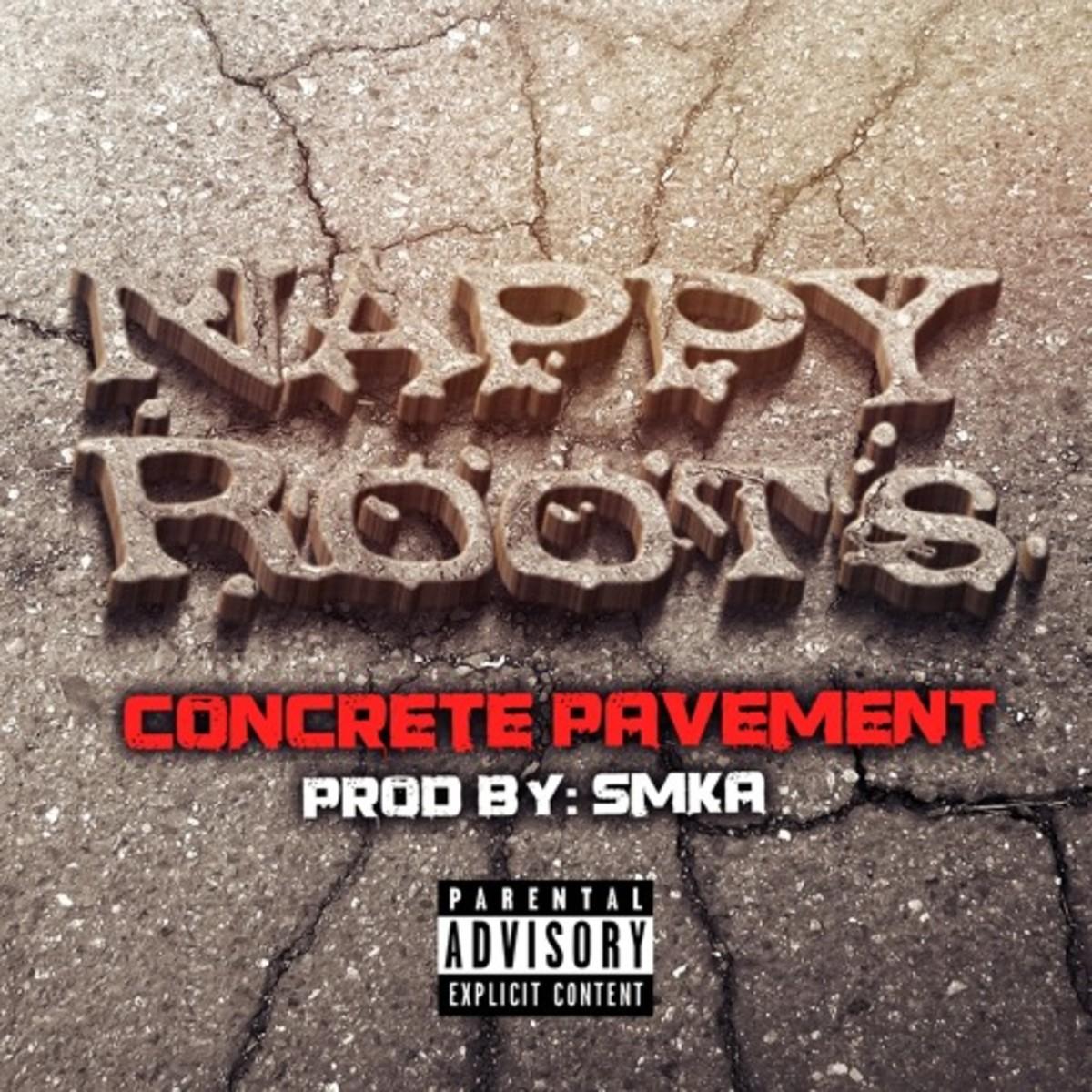 nappy-roots-concrete-pavement.jpg