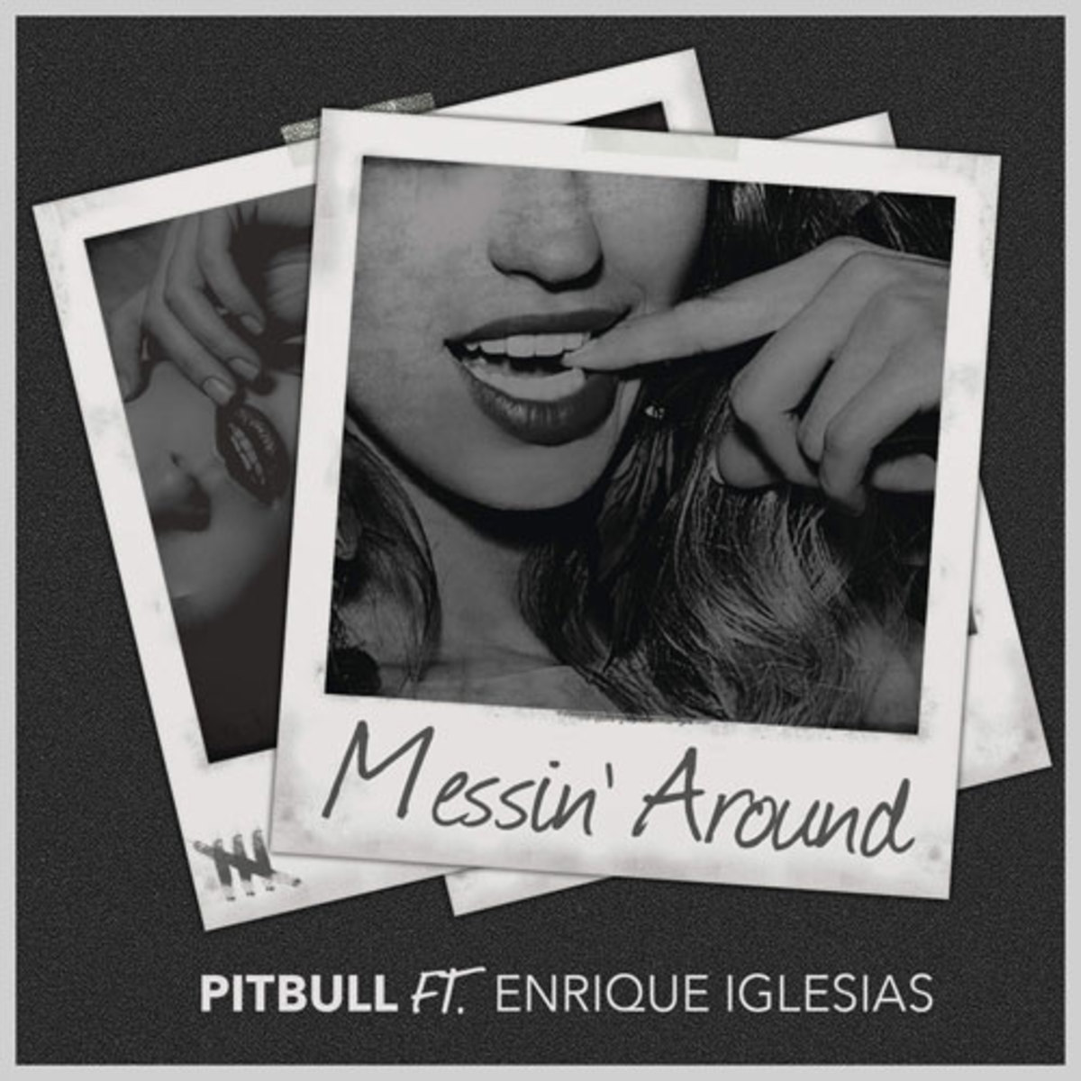 pitbull-messin-around.jpg