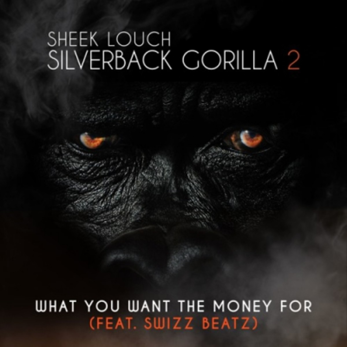 sheek-louch-what-you-want-the-money-for.jpg
