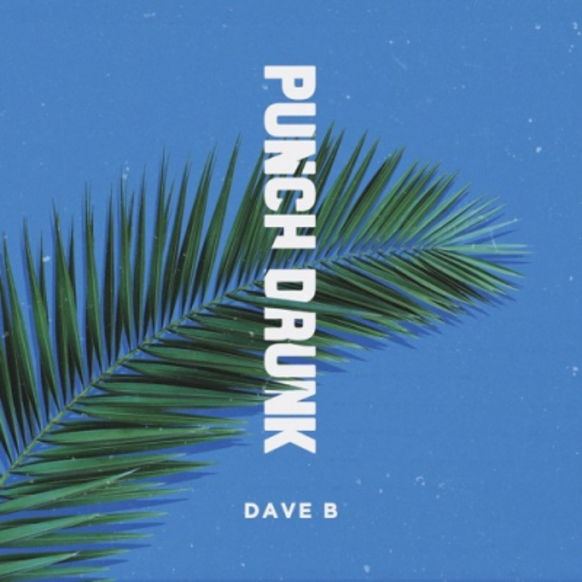 dave-b-punch-drunk.jpg