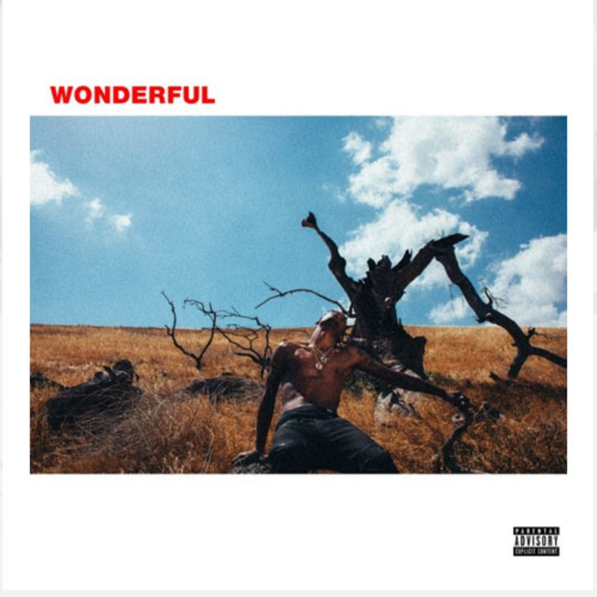 travis-scott-wonderful.jpg