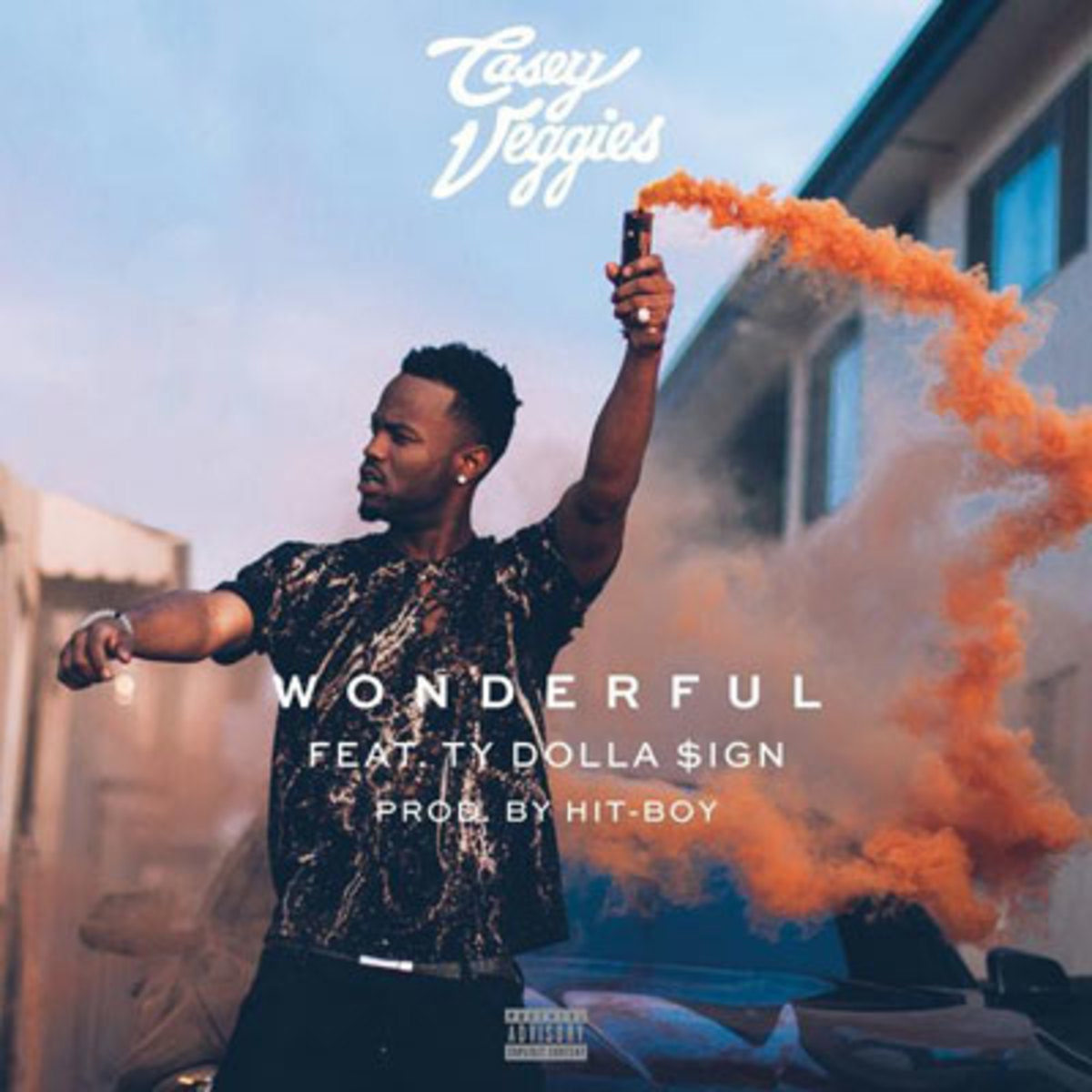 casey-veggies-wonderful.jpg