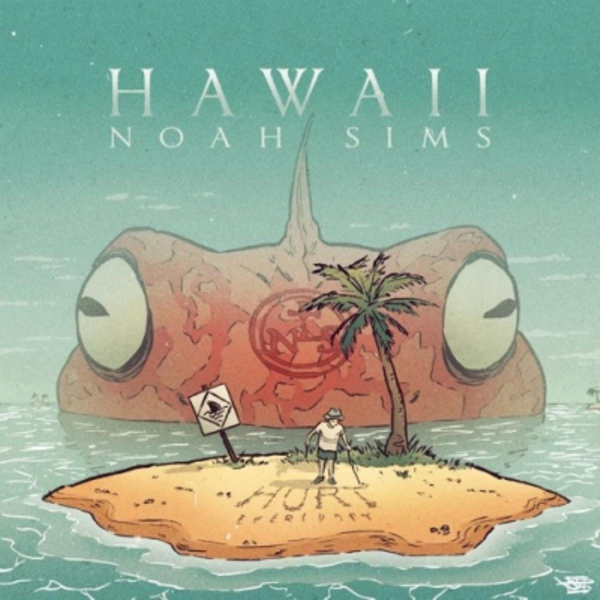 noah-sims-hawaii.jpg