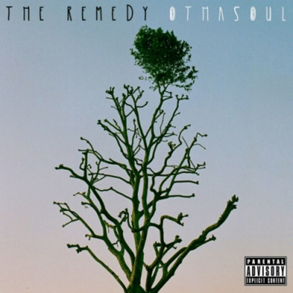 othasoul-the-remedy.jpg
