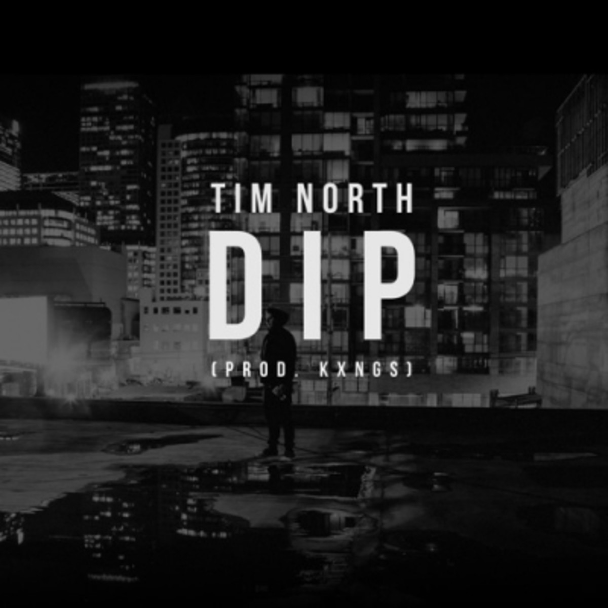 tim-north-dip.jpg