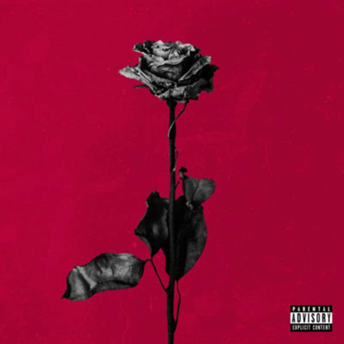 blackbear-deadroses.jpg