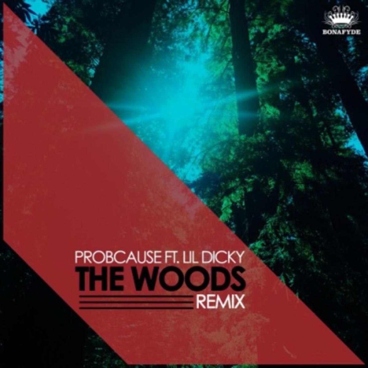 probcause-the-woods-remix.jpg