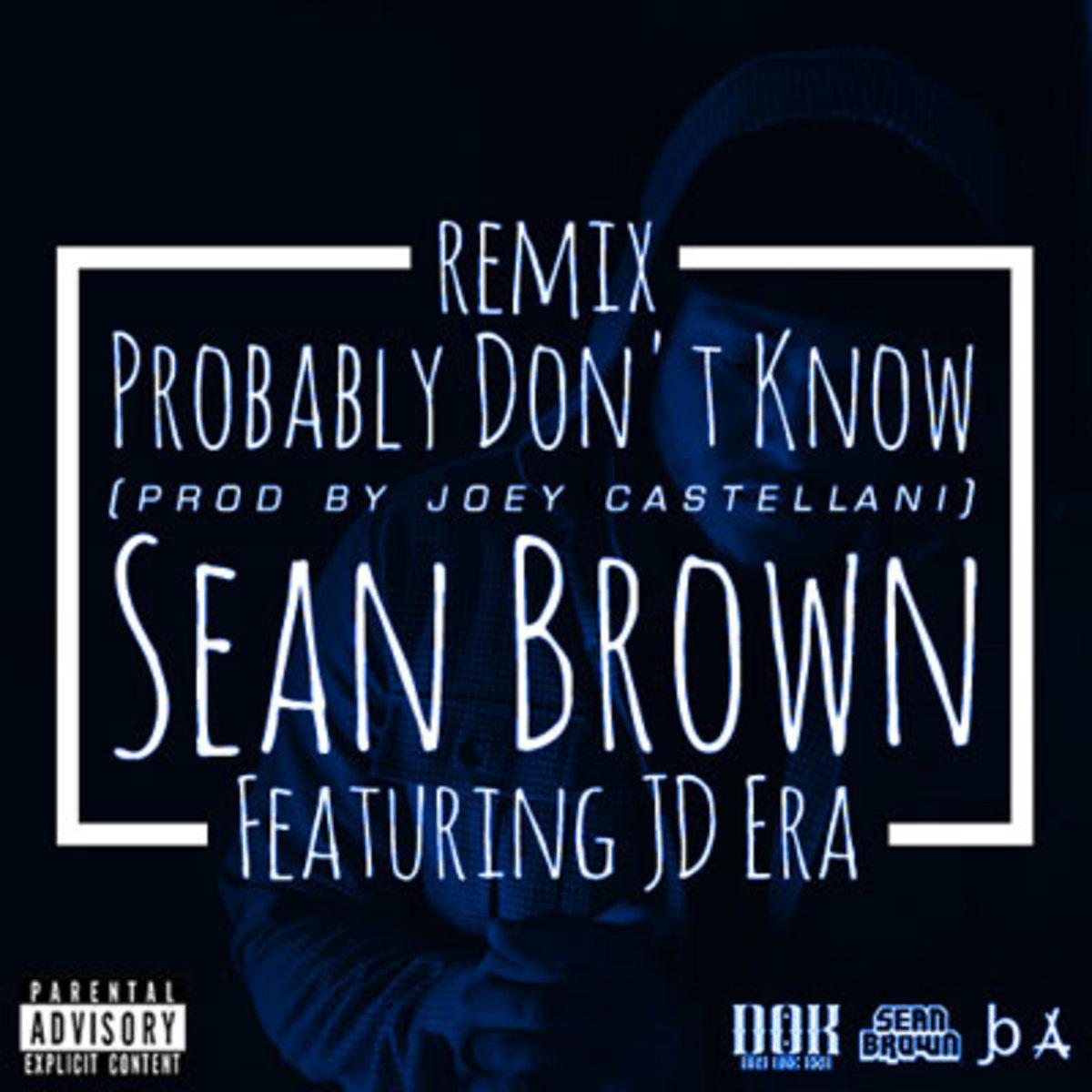 seanbrown-probdontknowrmx.jpg