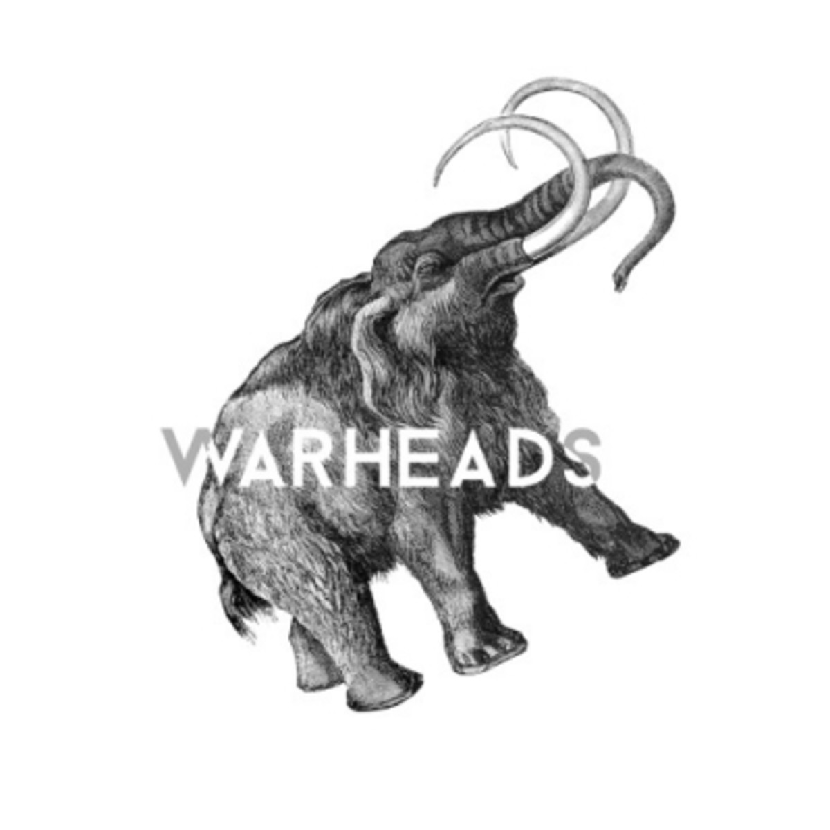 abhi-the-nomad-warheads.jpg