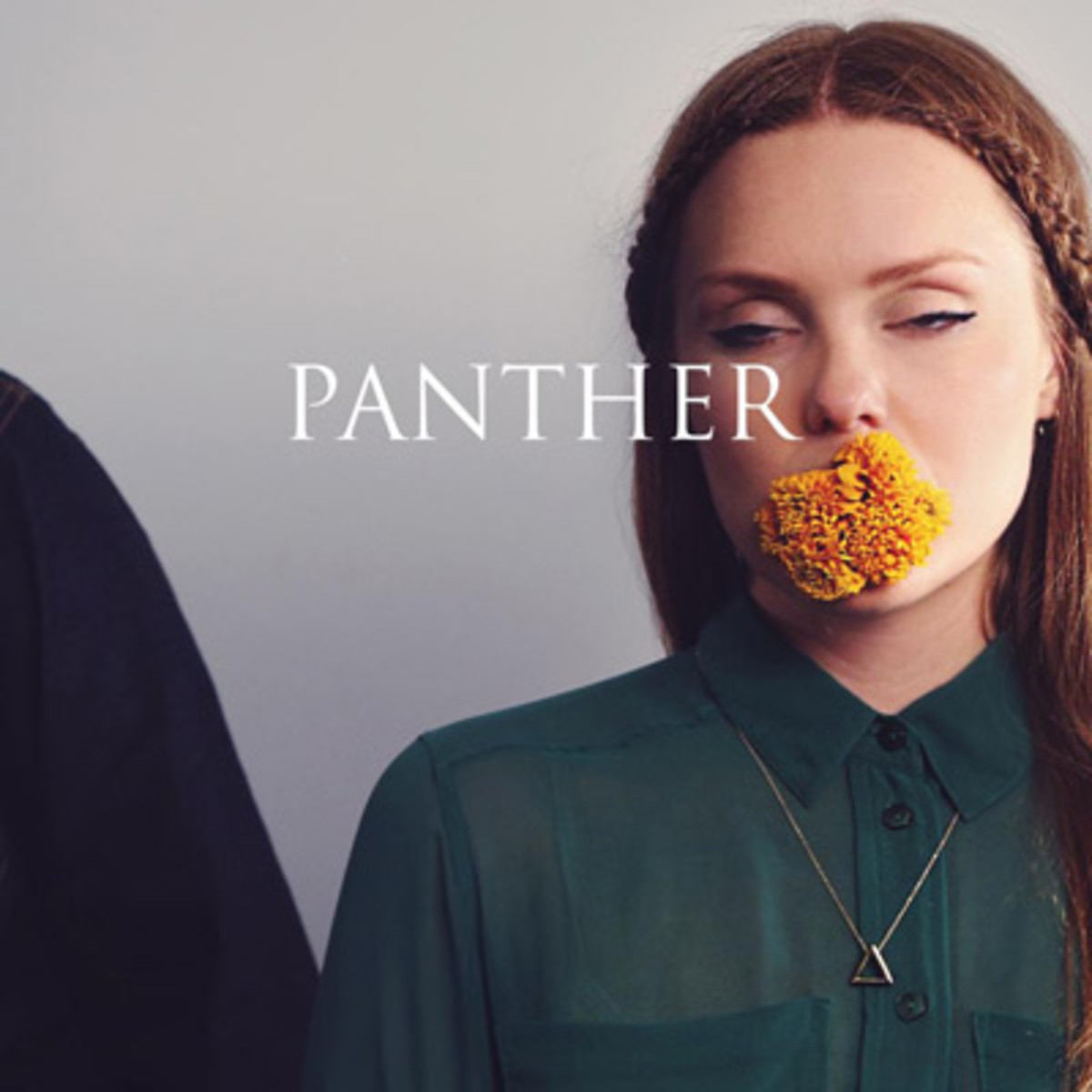 madeinheights-panther.jpg