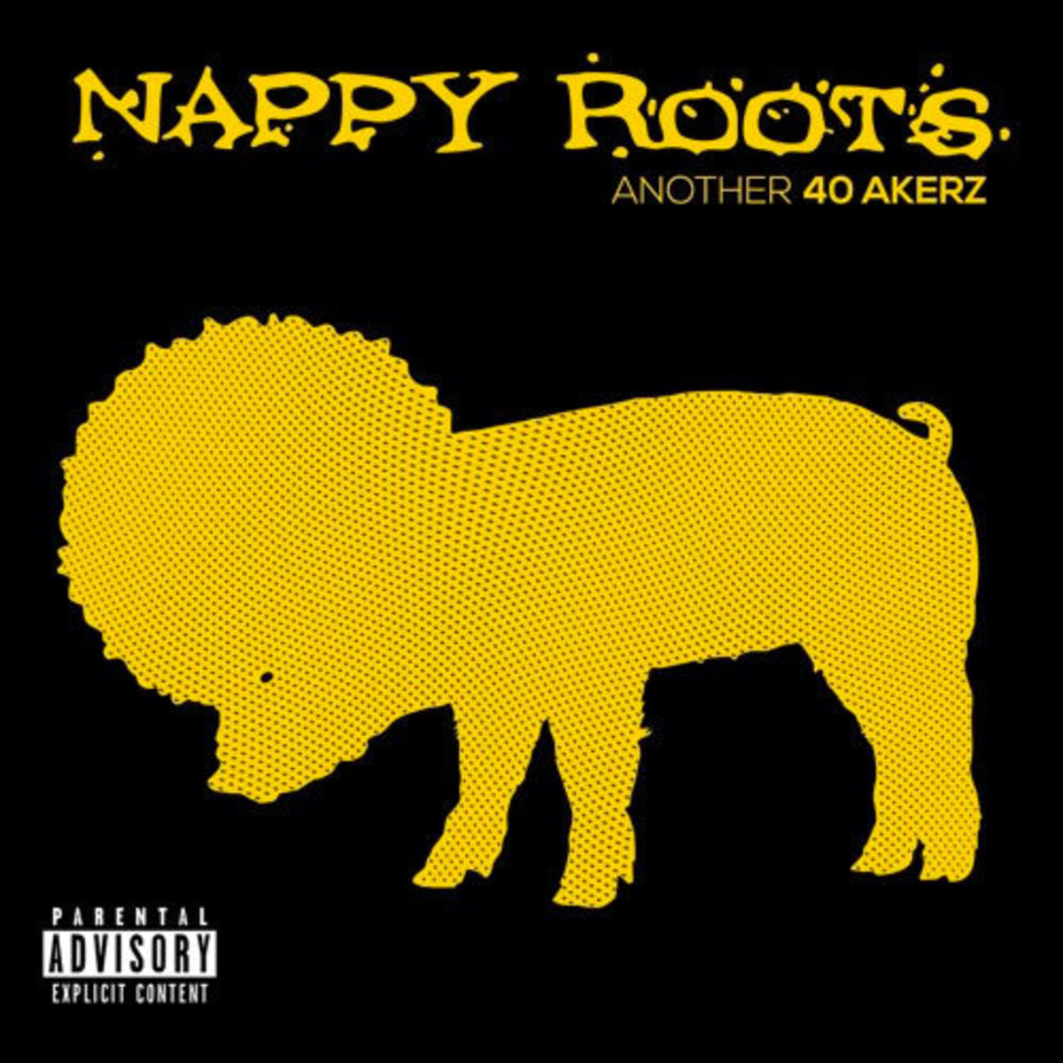 nappy-roots-the-void.jpg