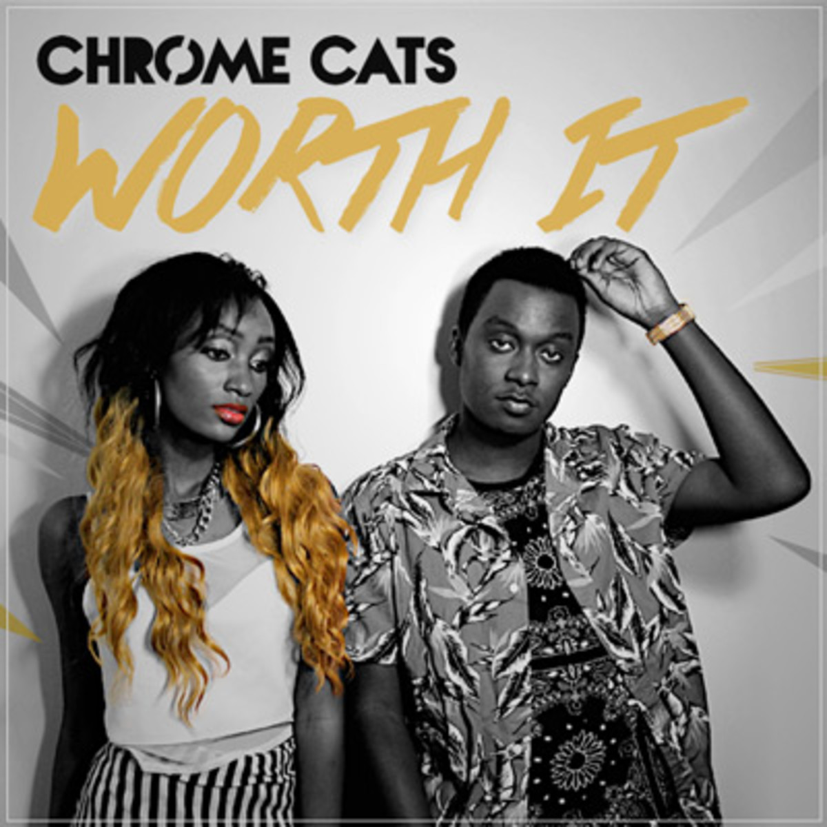 chromecats-worthit.jpg