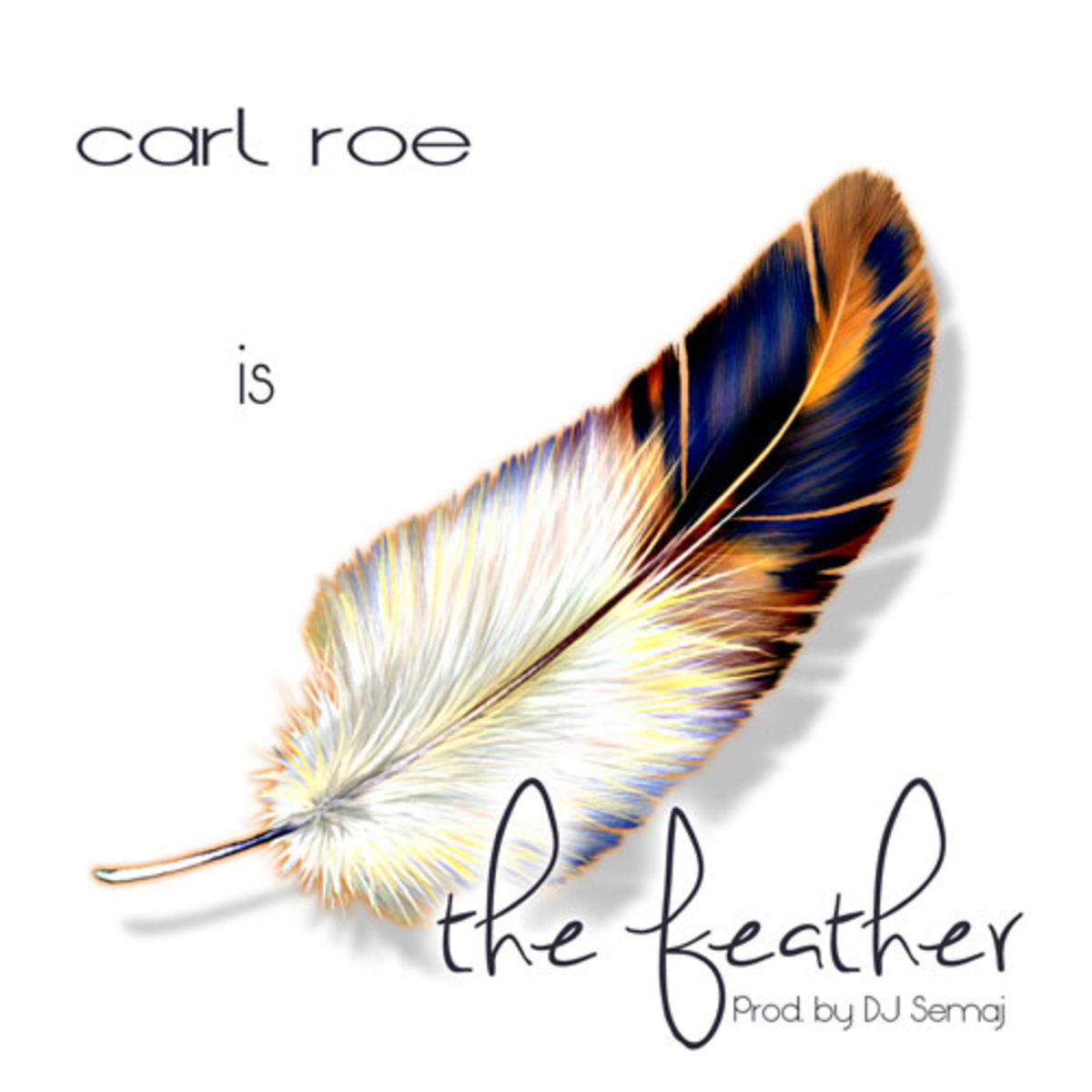 carlroe-thefeather.jpg