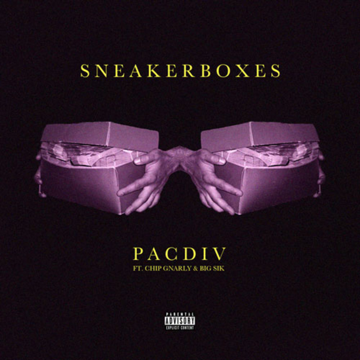 pacdiv-sneakerboxes.jpg