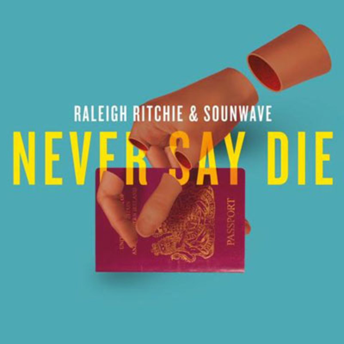 raleigh-ritchie-never-say-die.jpg