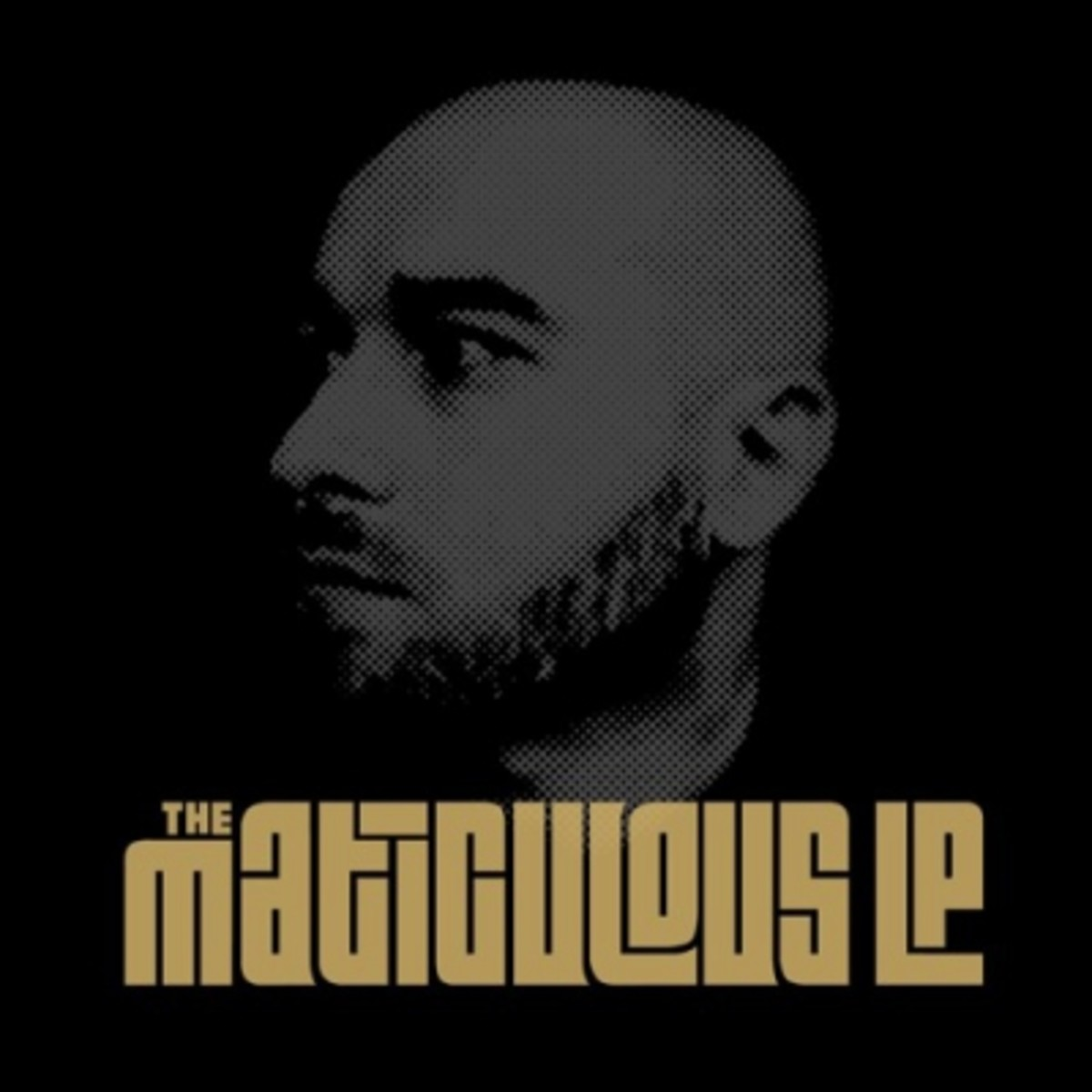 maticulous-the-maticulous-lp.jpg