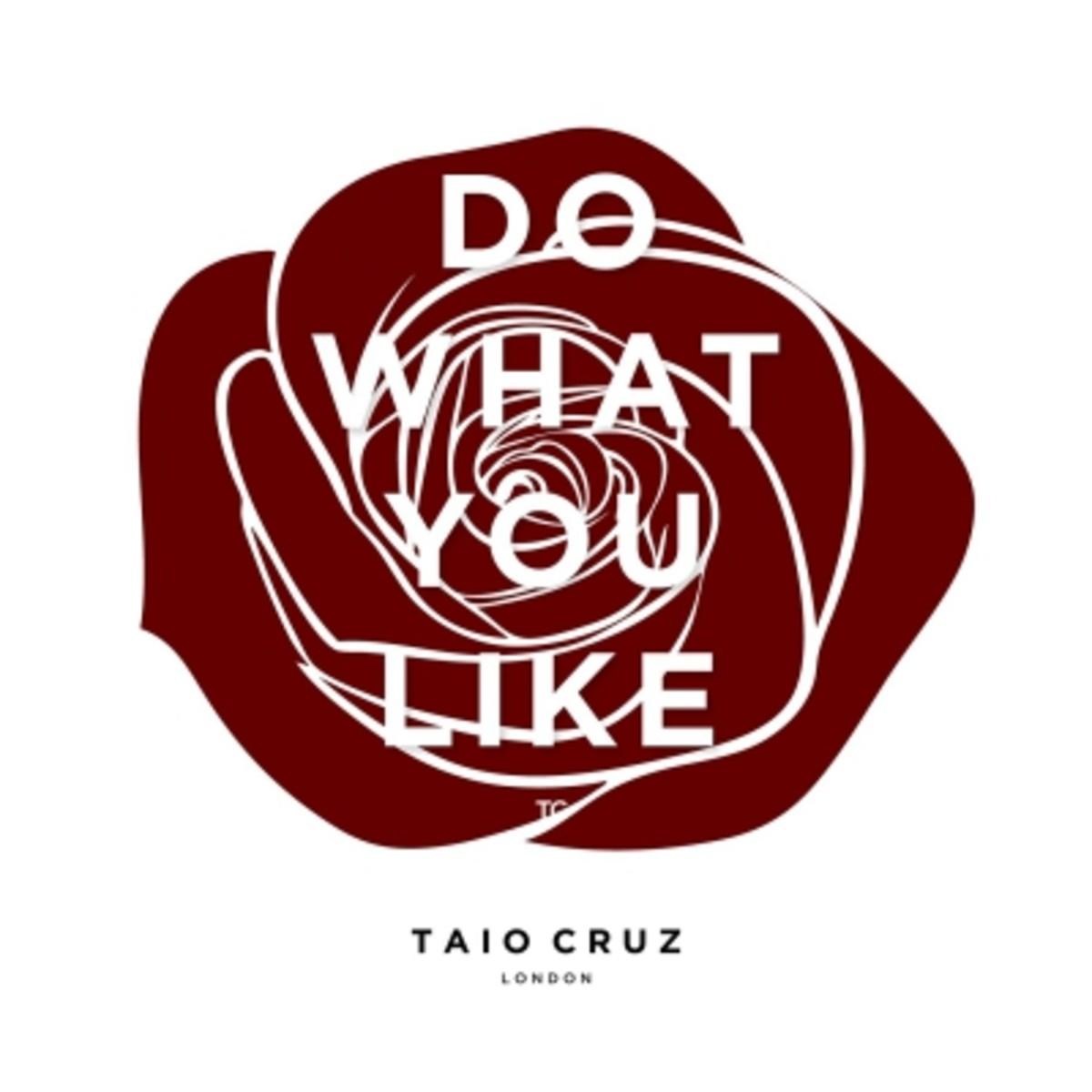 taio-cruz-do-what-you-like.jpg