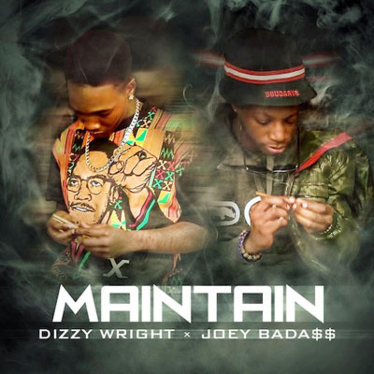 dizzywright-maintain.jpg
