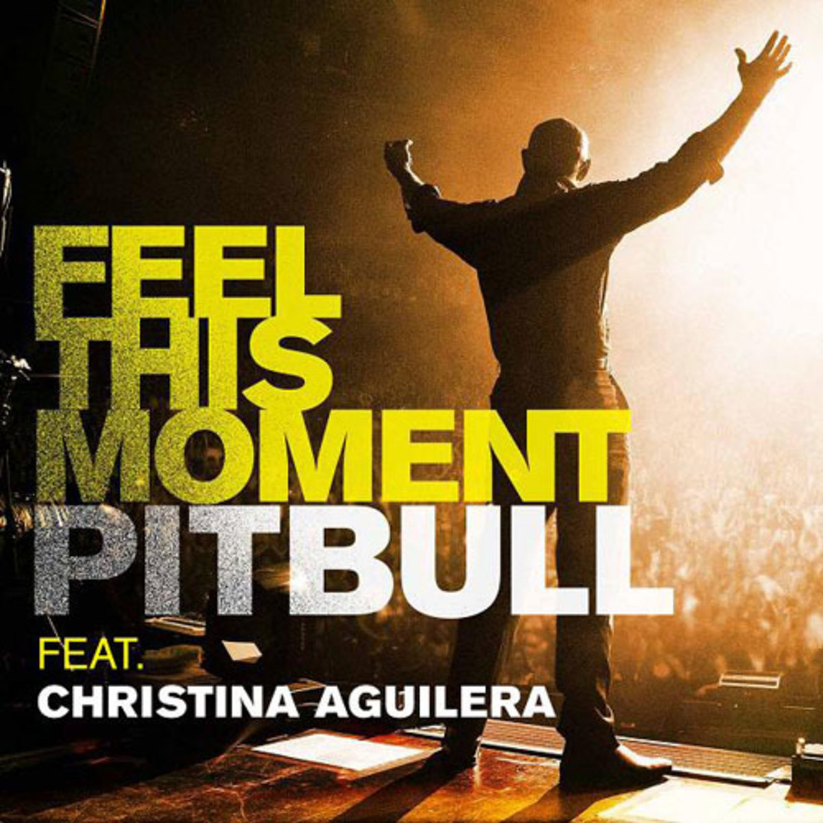 pitbull-feelthismoment.jpg