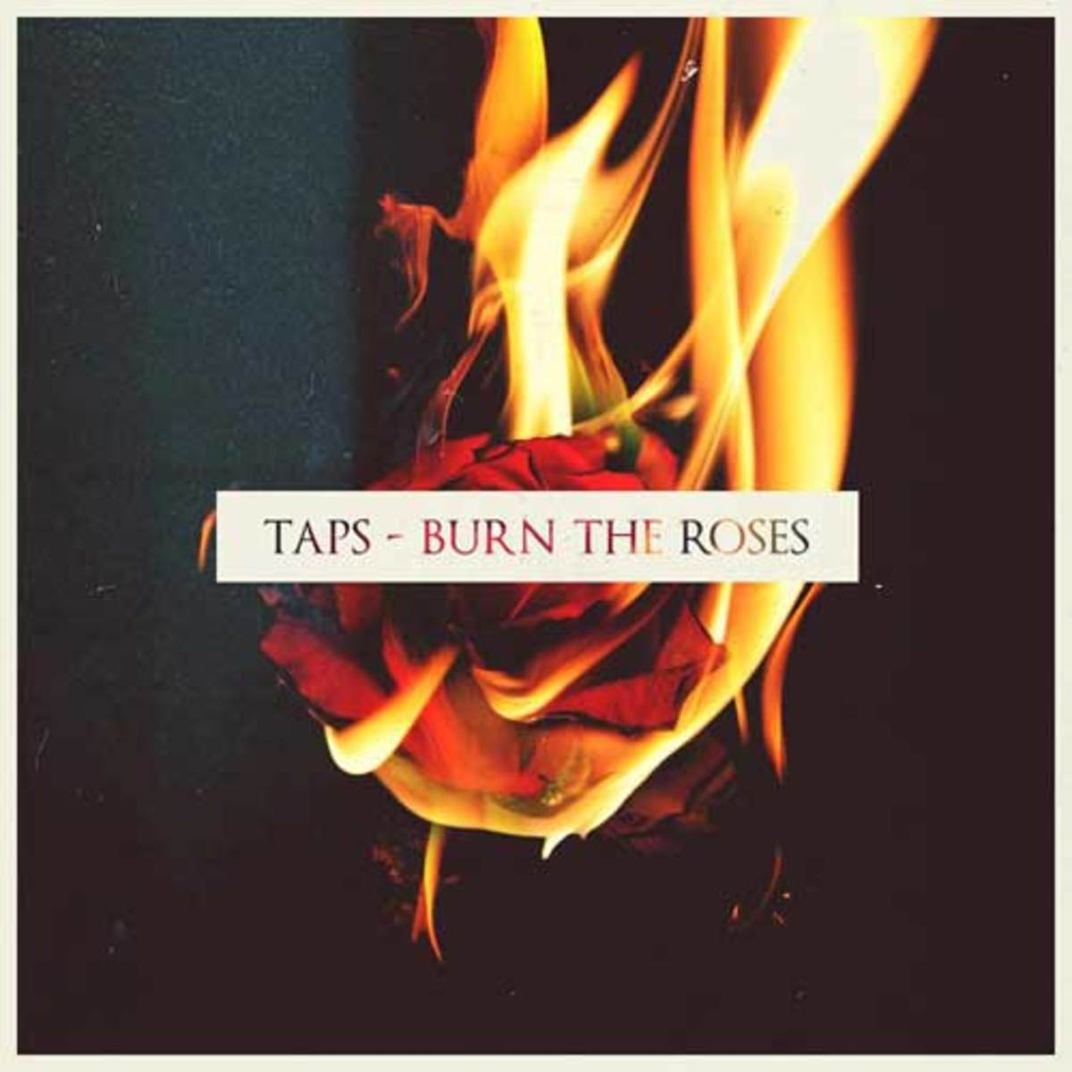 taps-burntheroses.jpg