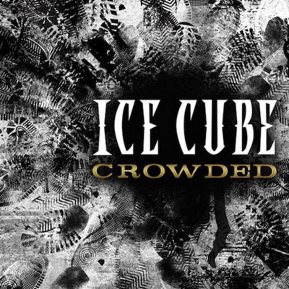 icecube-crowded.jpg