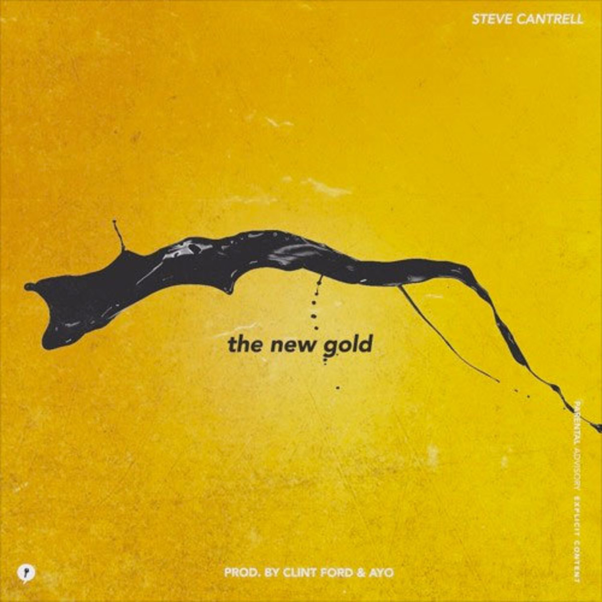 steve-cantrell-the-new-gold.jpg