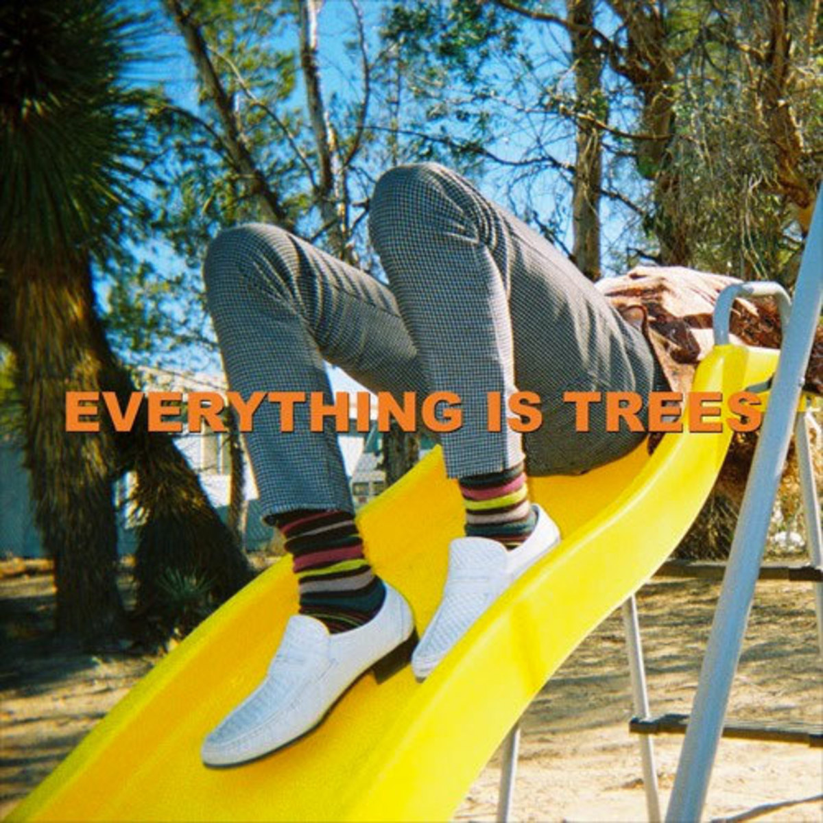 wes-period-everything-is-trees.jpg