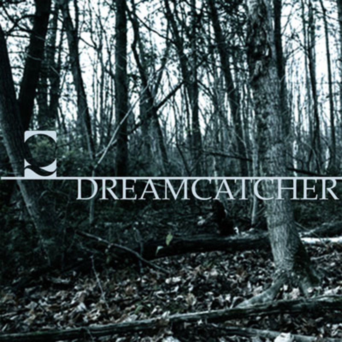 quills-dreamcatcher.jpg