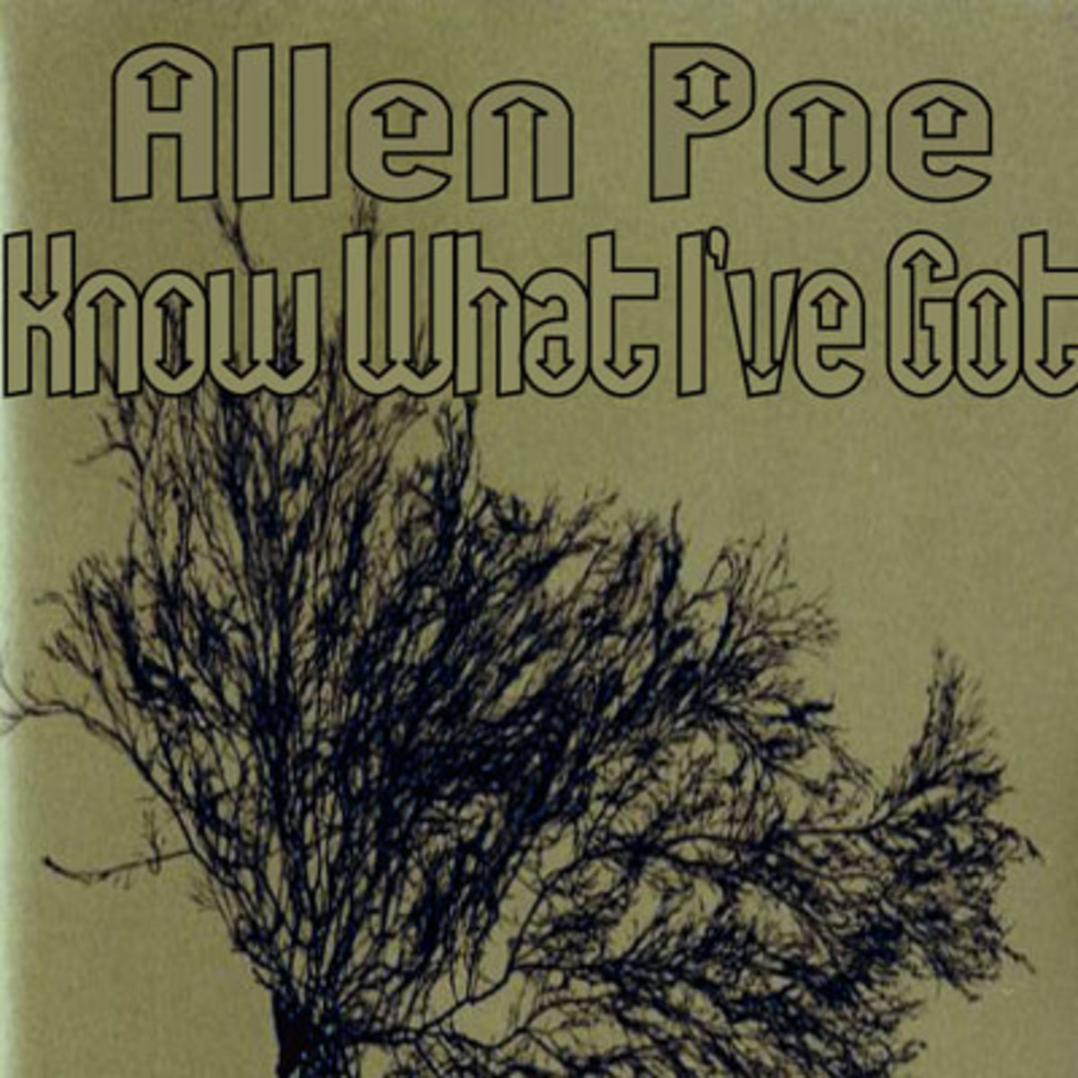 allenpoe-knowwhativegot.jpg