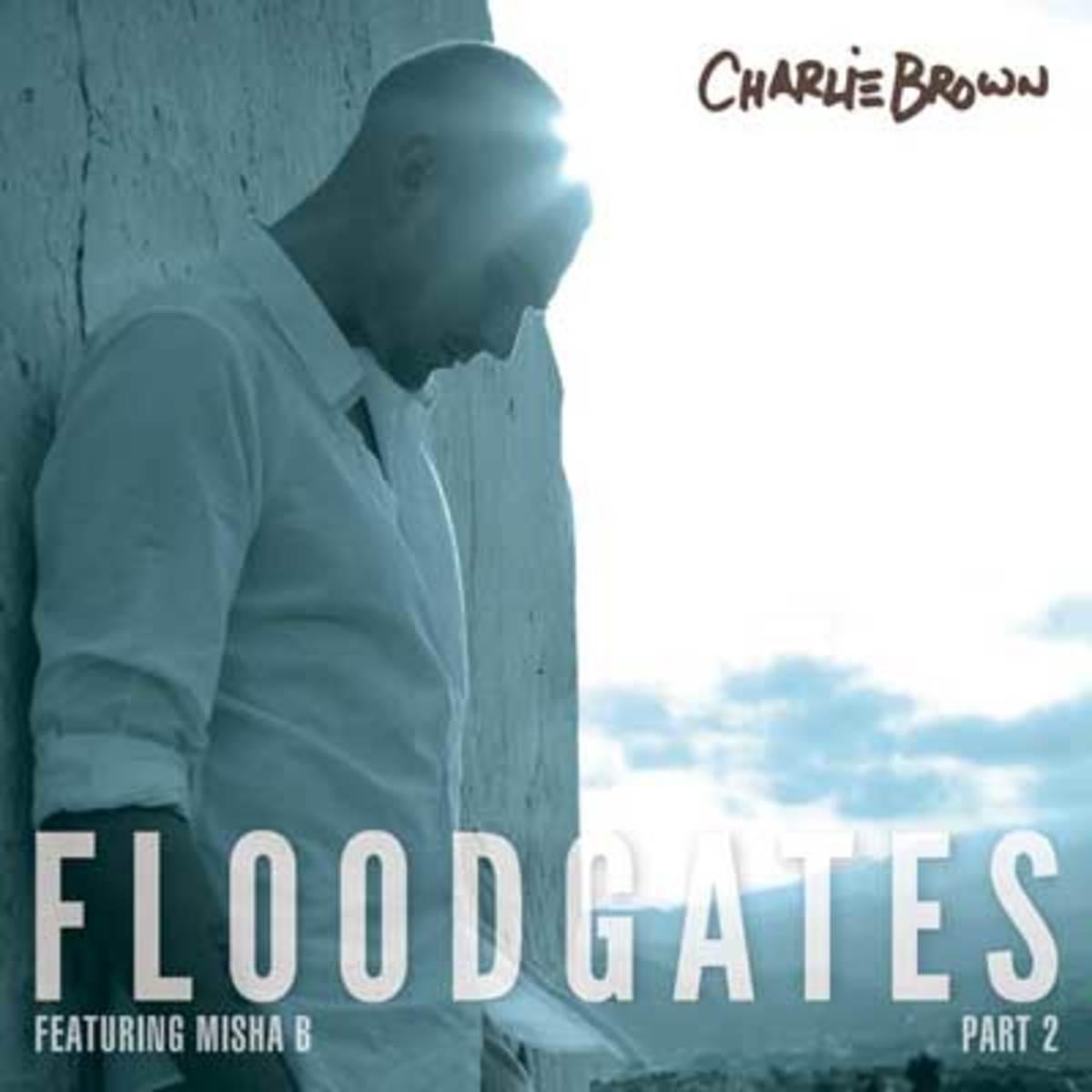 charliebrown-floodgates2.jpg