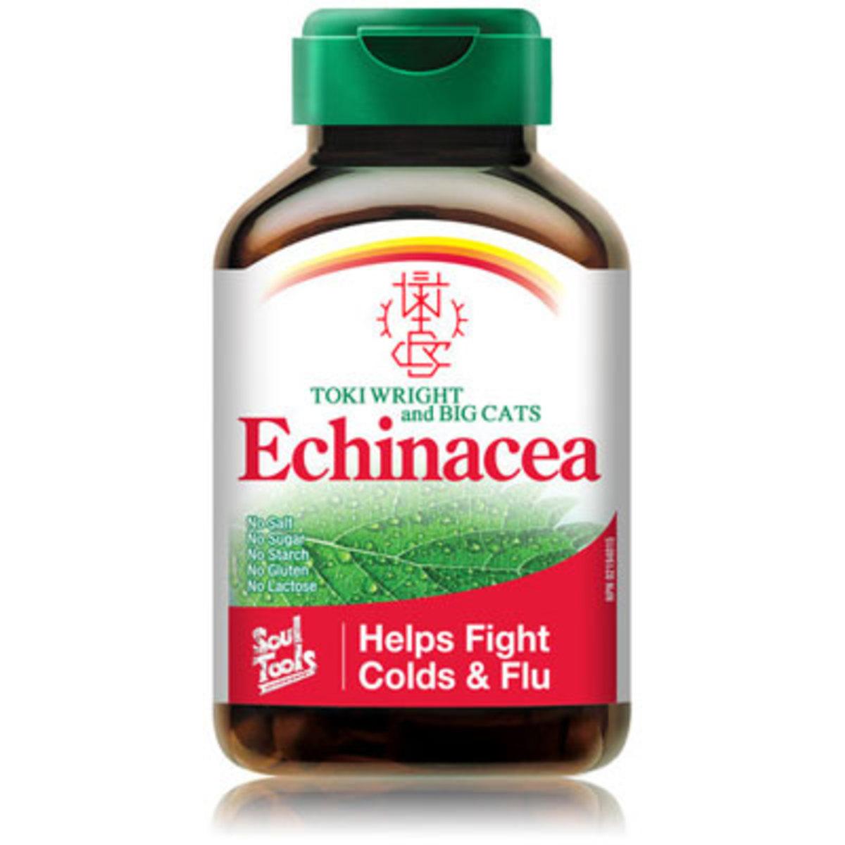 tokiwright-echinacea.jpg