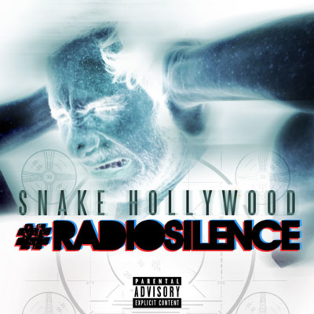 snakehollywood-radio.jpg